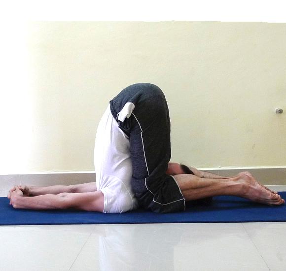 Calendario Maggio Hatha Yoga Tradizionale Beginners
