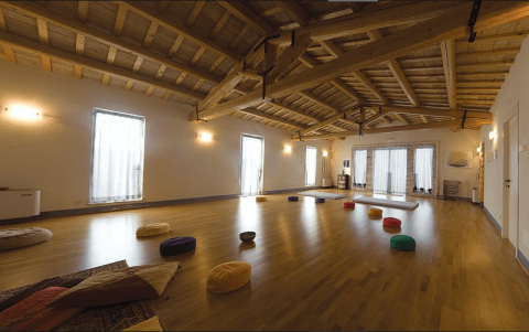 workshop hatha yoga e back bending con michele morbidelli