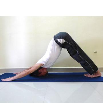 Calendario Novembre Hatha Yoga Tradizionale Beginners