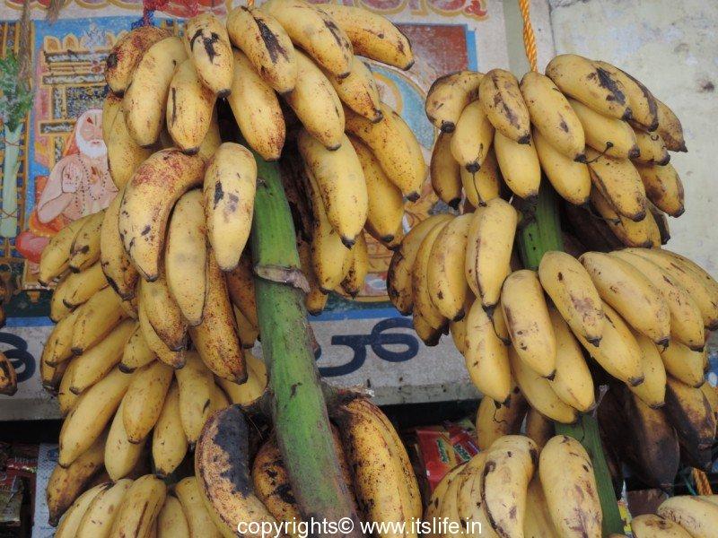 banane rasa bale
